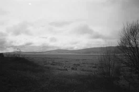 Luke Banfield 1_2 Ricoh KR-10, with 24-70mm kit lens Kodak C41 B_W