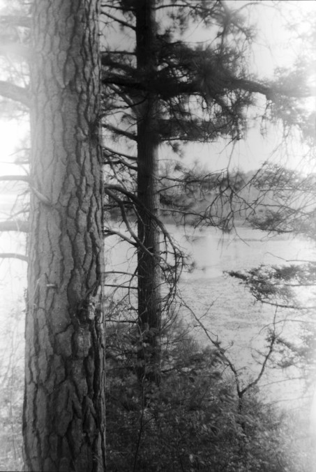 Stephen Milheim 1_2 Kodak BullsEye Tmax 100