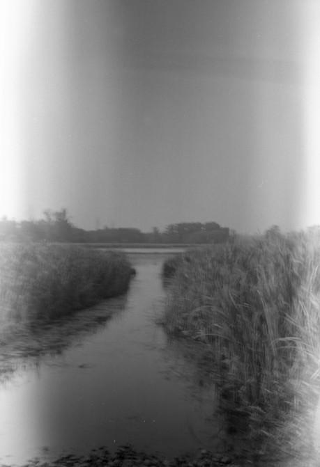 Stephen Milheim 2_2 Kodak BullsEye Tmax 100.jpg